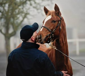 The record-breaking Frankel filly out of Finsceal Beo