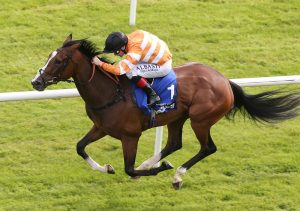 Covert Love wins the Irish Oaks to provide the trainer with his first Classic success