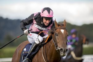 Harding has no target for the season and is simply happy to enjoy riding decent horses