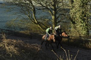 Joe Tizzard puts Thistlecrack through his paces on the gallops, right nearside