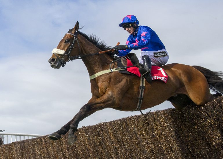 Second Ascot Chase for Cue Card