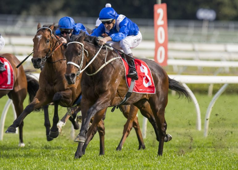 14 not out for Winx
