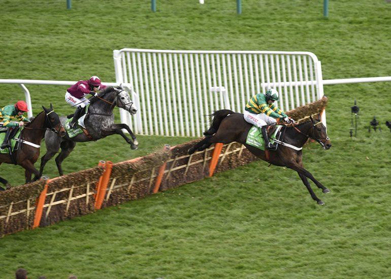 Buveur D'Air dominates Champion field