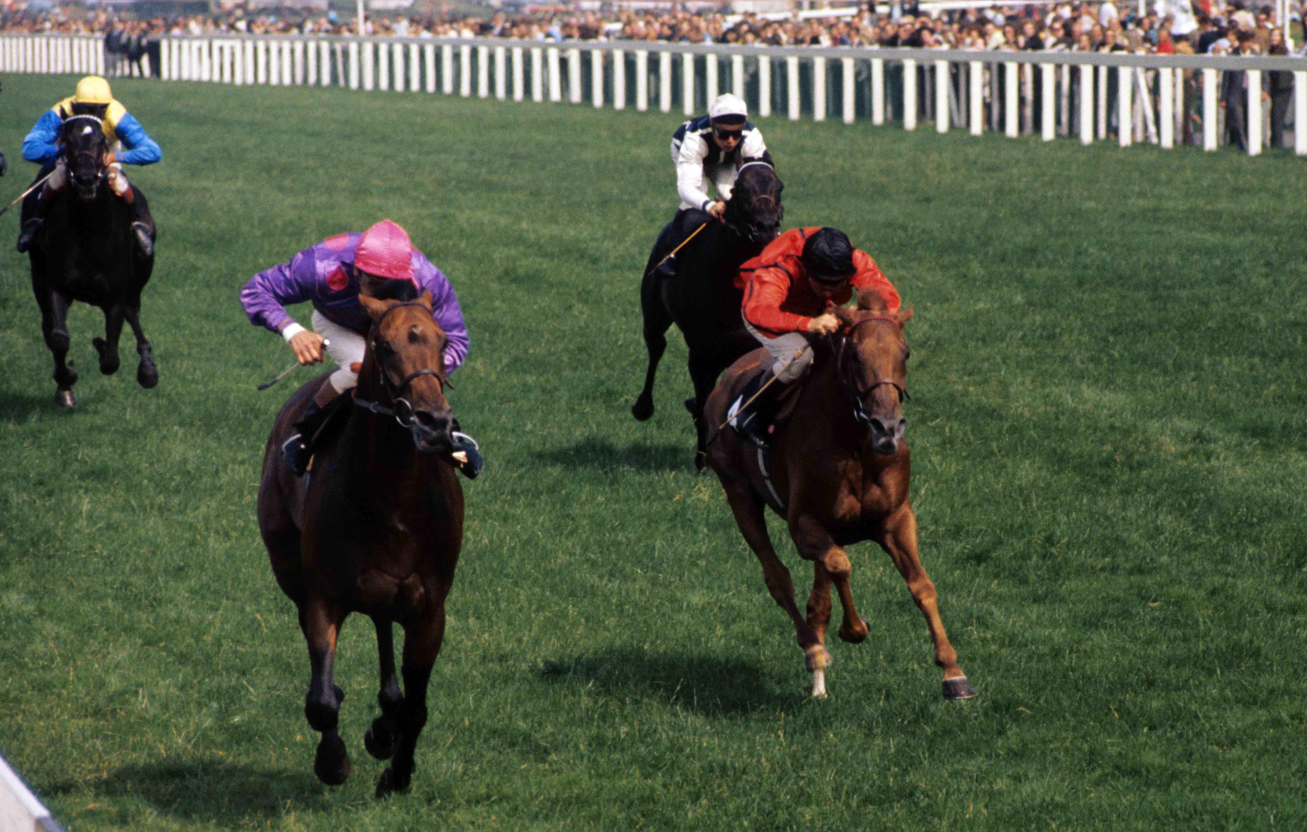 Brigadier gerard 2000 guineas betting top ten sports betting sites