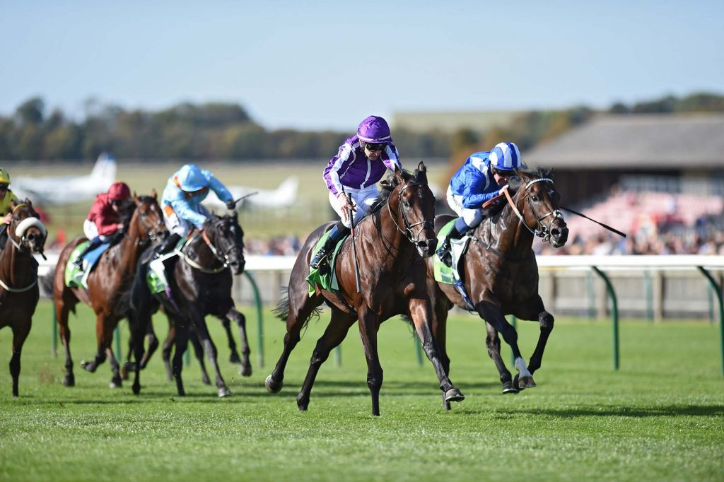 Ten Sovereigns (purple) and Donnacha O'Brien win the Middle Park Stakes at Newmarket