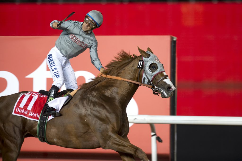 California Chrome wins the Dubai World Cup