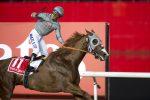 California Chrome wins the Dubai World Cup