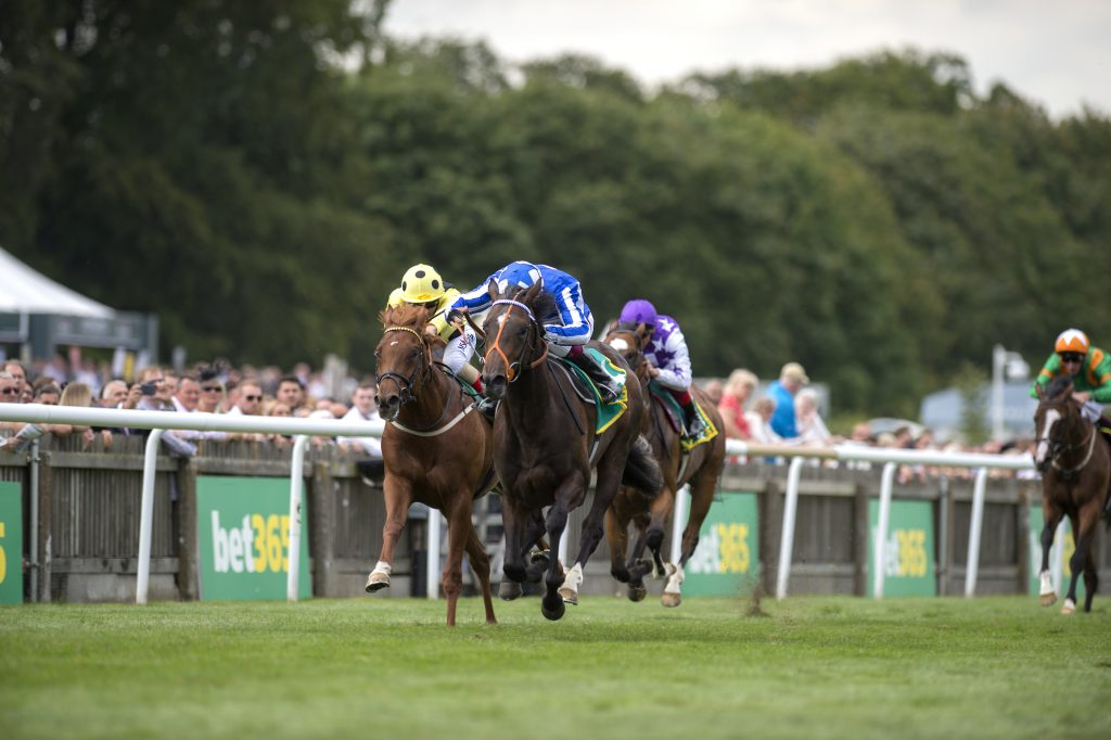 Mystery Power in the Superlative Stakes