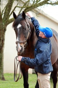 2007 Derby hero Authorized was one of his first dabbles in bloodstock