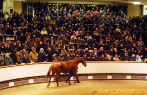In front of a packed sales ring at Tattersalls, Dancing Rain sells for 4 million gns