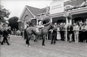 In The Groove in the winner's enclosure at York