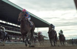 Johannesburg, a Group/Grade 1 winner in four countries, takes Belmont Park by storm