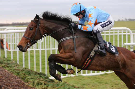 Un De Sceaux is one of an increasing number of high-class French-breds in British and Irish stables